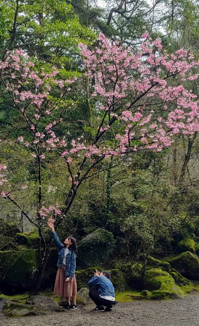 KIRISHIMA, CHIRAN, KYUSHU,JAPON